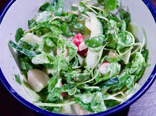 Watercress, cucumber & radish salad